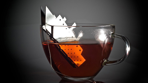 creative-tea-infusers-2-11-1__605