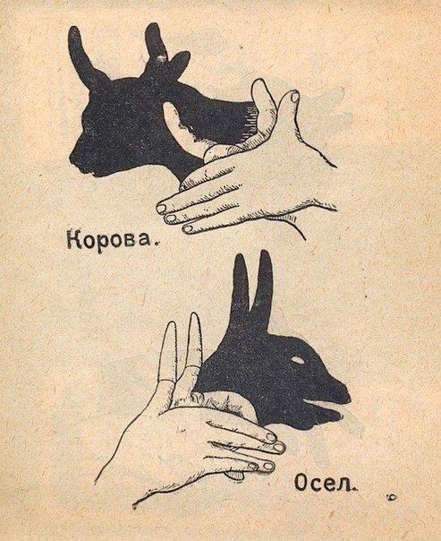 Показать зайчика