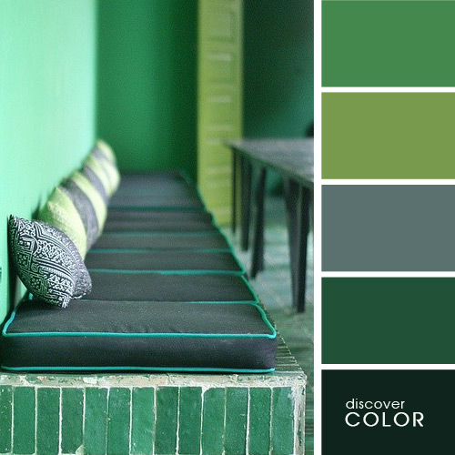 цвета для дома