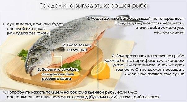 выбираем рыбу