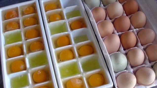 egg06
