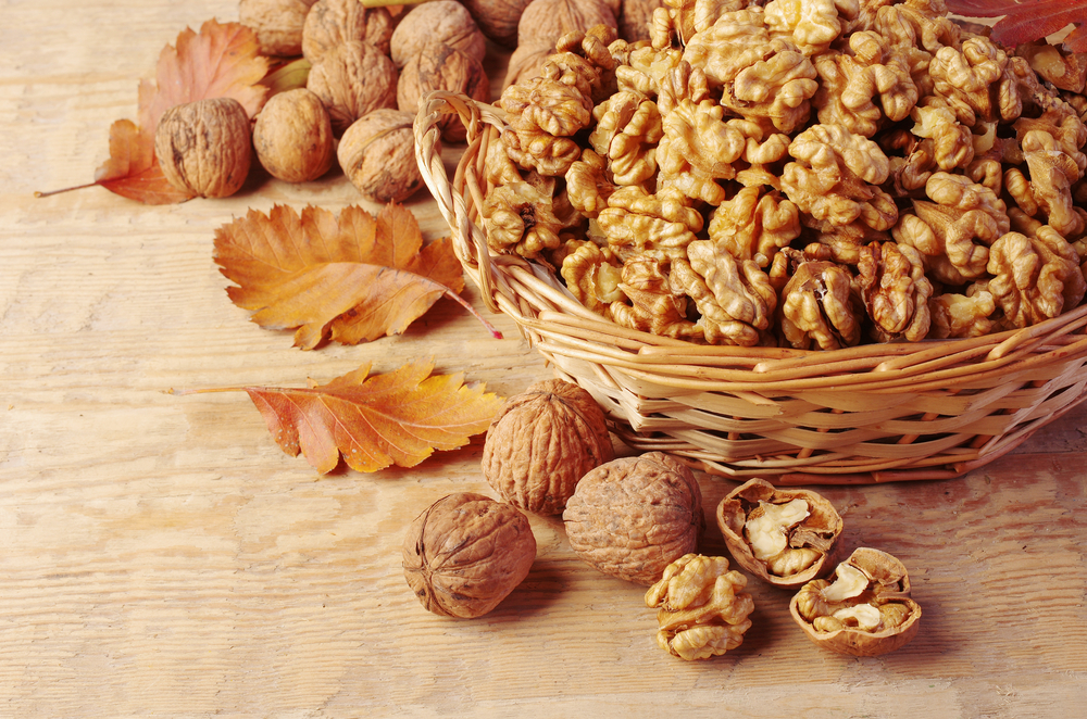 benefits-of-walnut