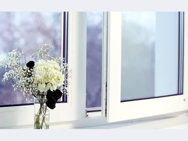 okno5