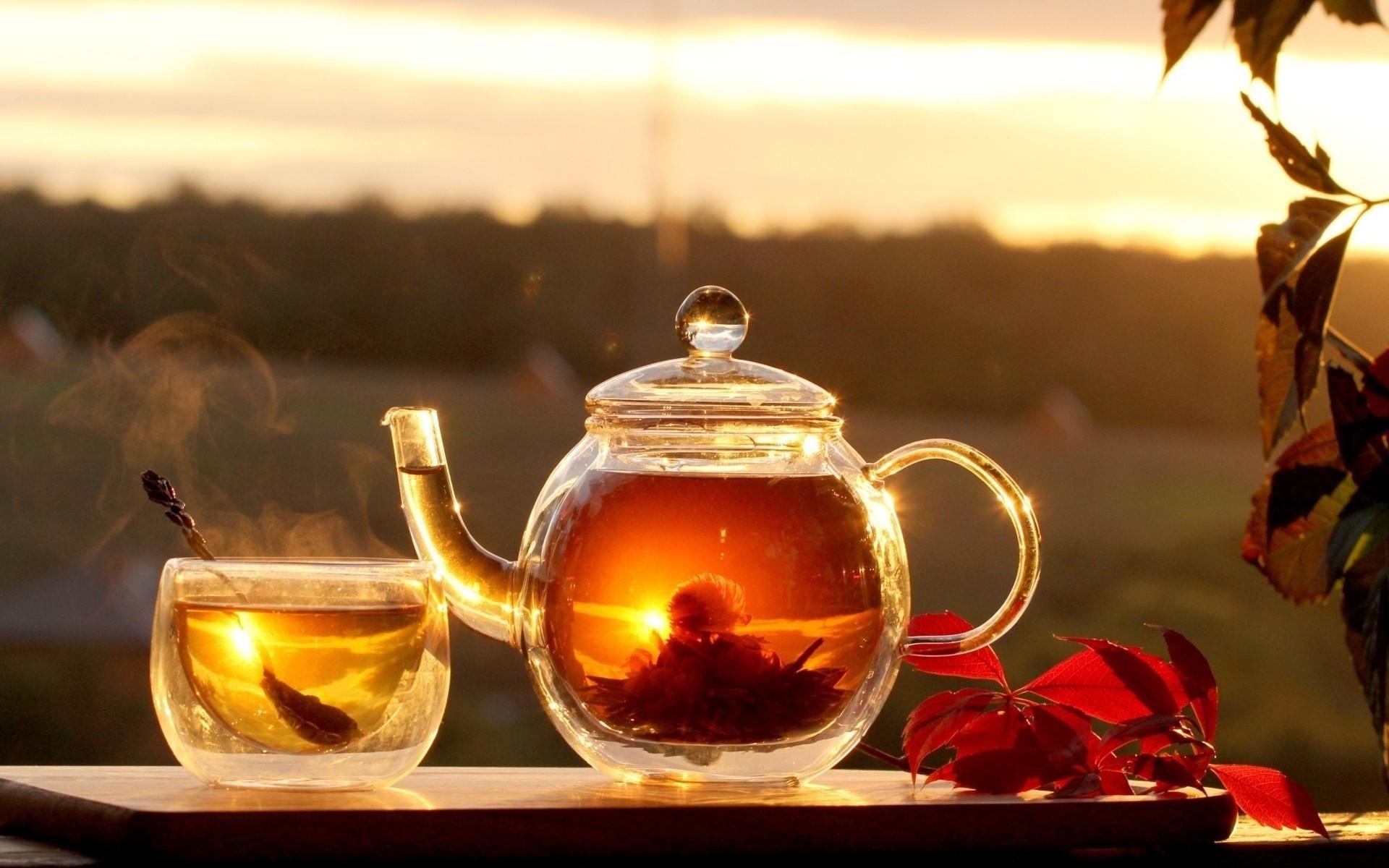 Как нельзя пить чай: 10 чайных запретов из Китая