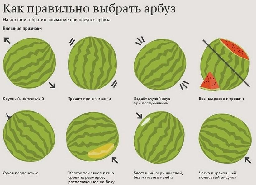 выбрать арбуз