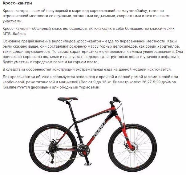 выбираем велосипед5
