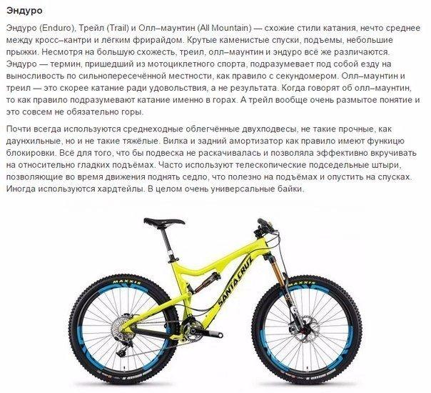 выбираем велосипед6