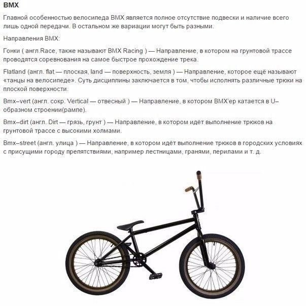 выбираем велосипед8