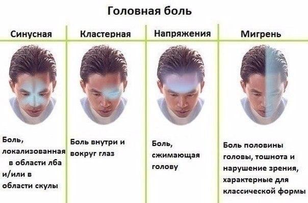 golovnaya