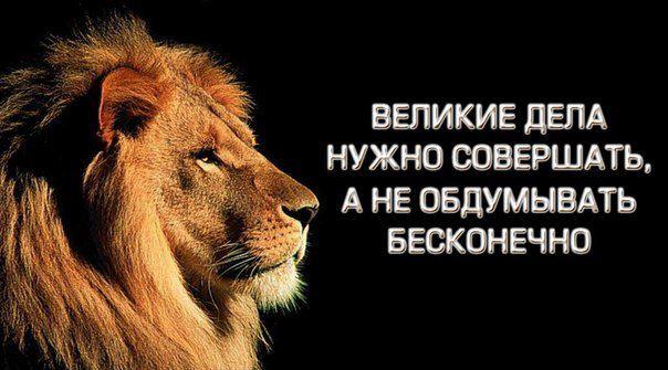 Lev-motivatsiya-k-dei-stviyu